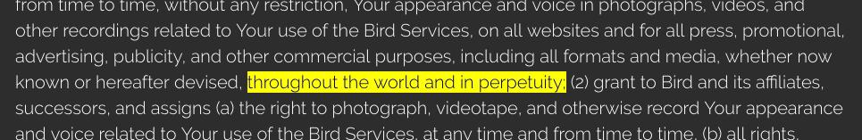 excerpt from bird's user agreement.