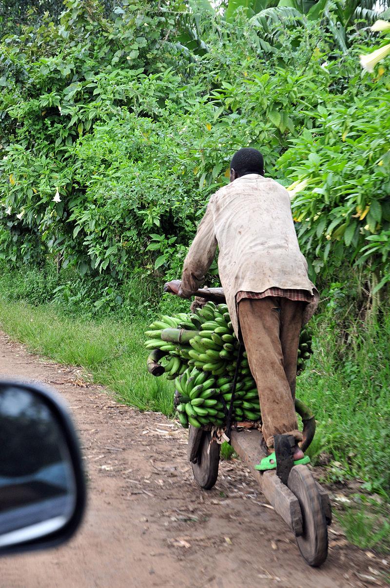 800px-Chukudu_in_North_Kivu.jpg