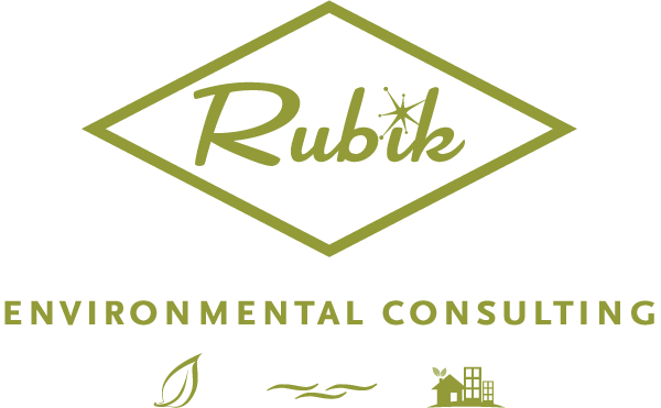 RubikWebHome-consulting.png