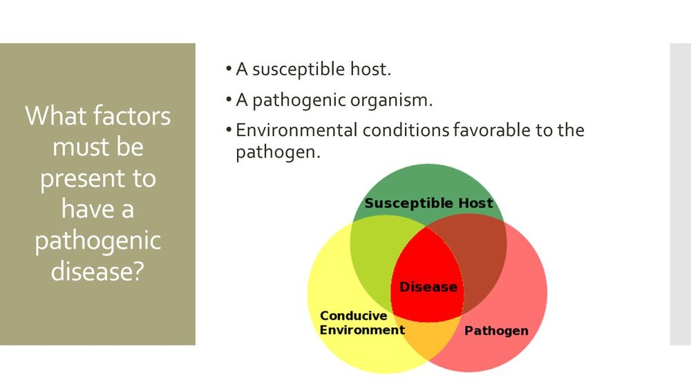 What+factors+must+be+present+to+have+a+pathogenic+disease.jpg