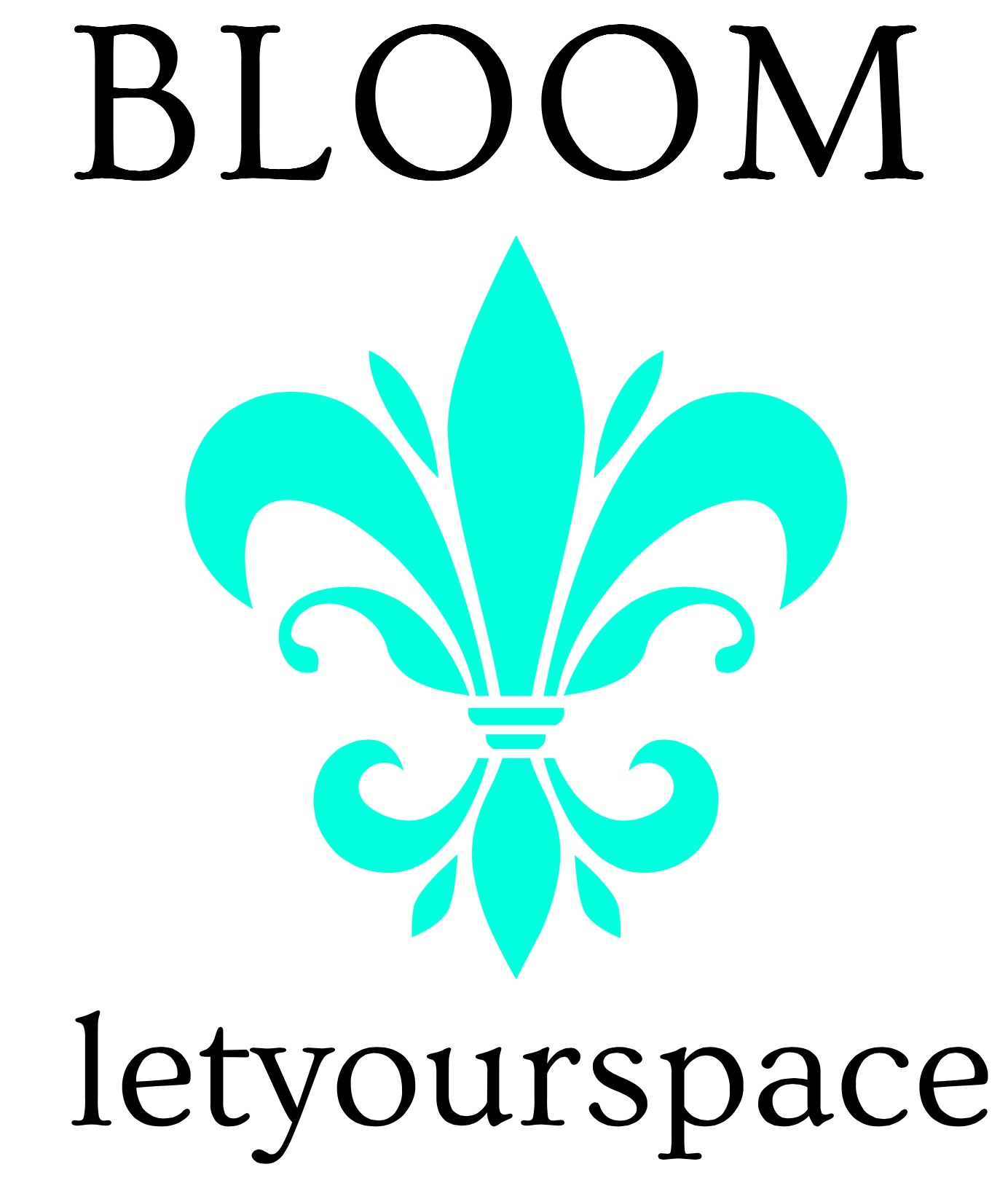 Let Your Space BLOOM - Professional Organizer Serving Baltimore Homes & Beyond
