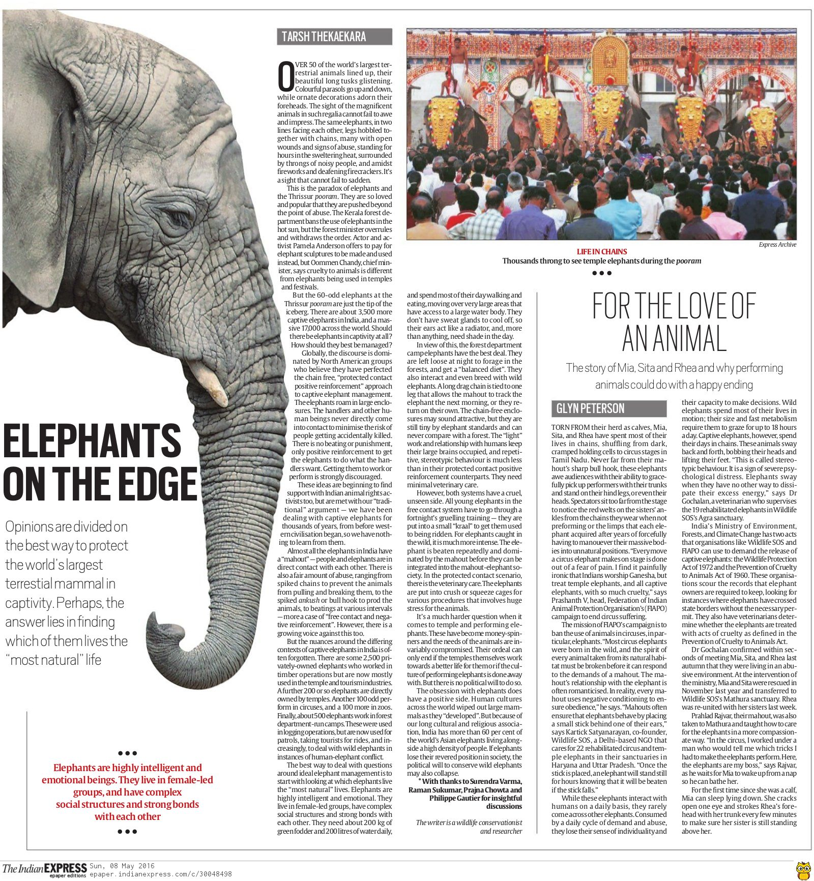 The Indian Express — Glyn Peterson