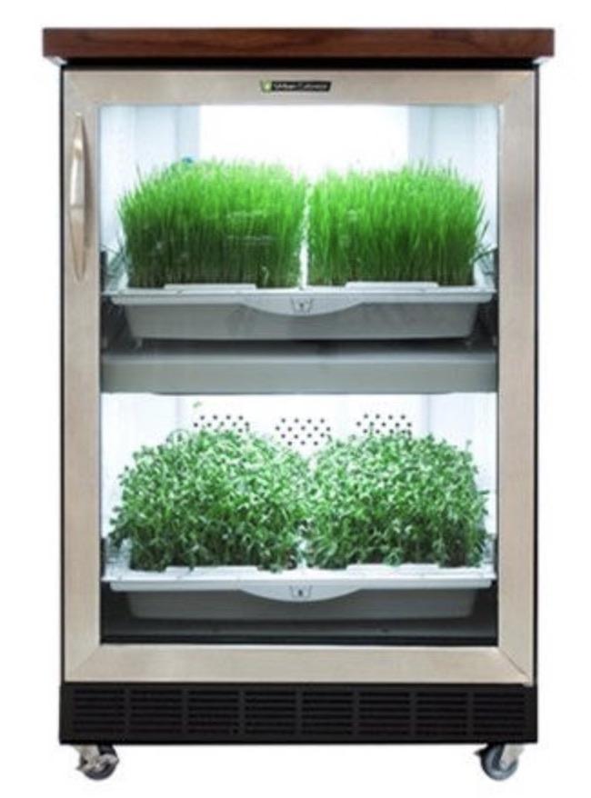 Urban cultivator micro greens grower