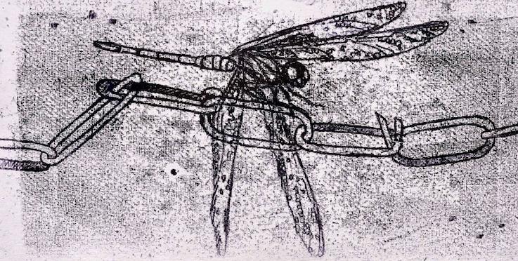 Links_JWT_DragonflySeries_Monoprint_Ink_36x18cm_DSC_7387-4-4.jpg20180214-22942-99cnhr.png
