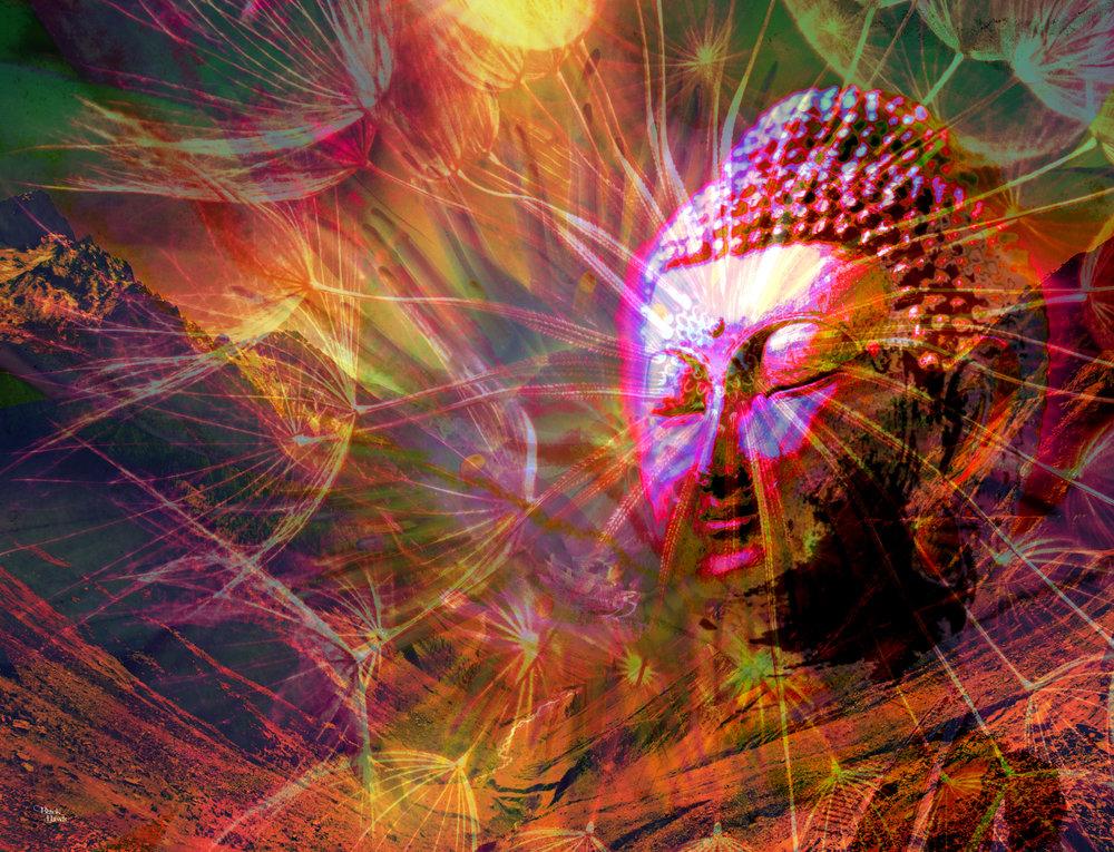 Buddha Vision