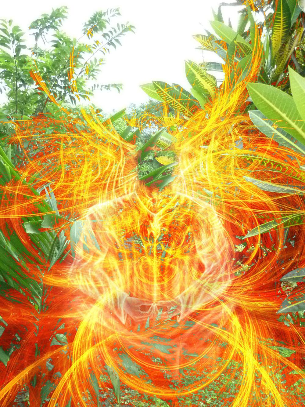 achtergrond natuur-vuur.jpg