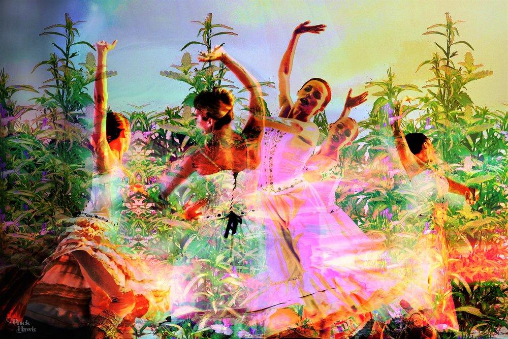Dancing Life.jpg