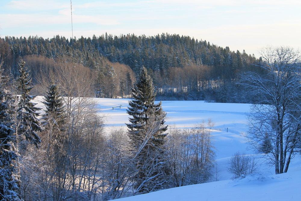 Luminen Sipoonkorpi kutsuu lumikenkäilemään