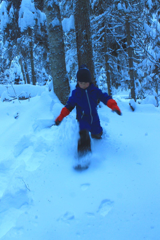 Lumikengät houkuttelevat tutkimaan metsää polun ulkopuolelta