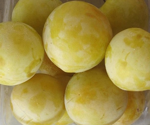 Shiro Plums - These bright yellow plums are sweet, juicy, and mellow. Perfect for snacking and eating fresh.  Remember to be very gentle with them as their light skin reveals (harmless as it may be) even the slightest of bruises!