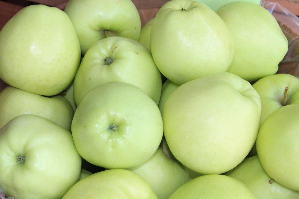 Ginger Gold apples.jpg