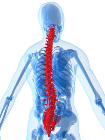 Human-Spine.jpg
