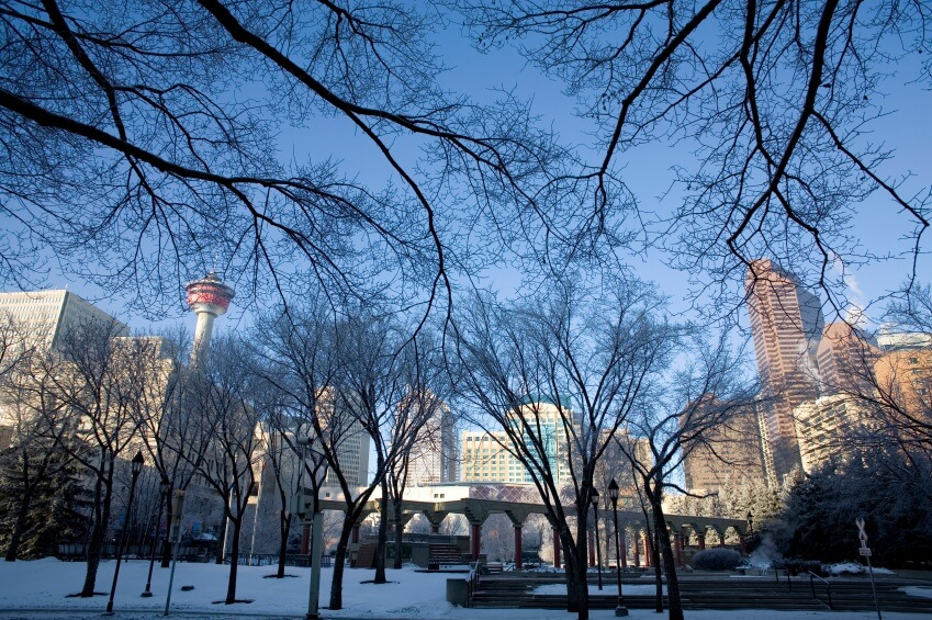 Calgary-winter