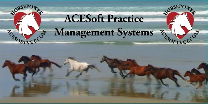 www.ACESoftVet.com  - business management practice software