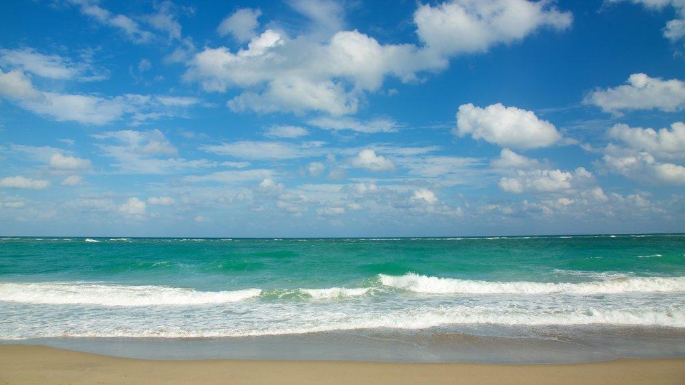 jupiter beach park beaches in jupiter florida the palm beaches