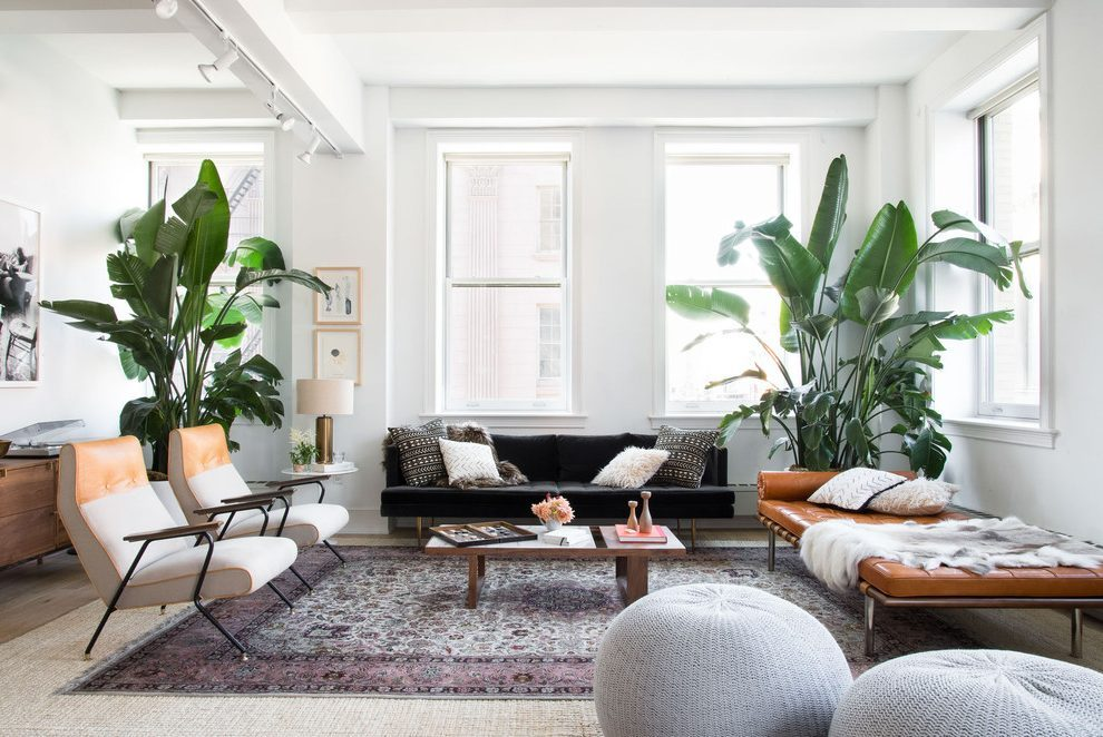 Plants - Want to make your home more inviting and personal? Add plants and greenery to calm any space and purify the air! This is a simple and inexpensive way to make your rental homier!