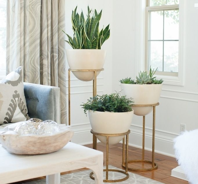 3. Plants - Another aspect of your home your guests will notice is your choice of greenery, or lack thereof.Adding green plants can create a more relaxing environment for guests. Whether they are real or fake, they can make a huge difference in calming the atmosphere.Just make sure your home isn't overcrowded with too many house plants, because this can scare off your guests!