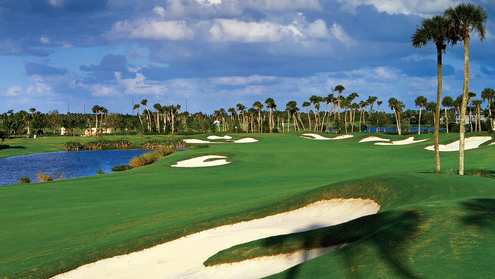 1. Pristine Golf Courses - The Palm Beaches area is the home of the PGA of America! There are 16 golf courses in Jupiter alone, but 70 golf courses just within 20 miles of Jupiter! This alone attracts the world's best golfers such as: Masters winner Tiger Woods, Brooks Koepka, Rory McIlroy, Rickie Fowler, and many more.