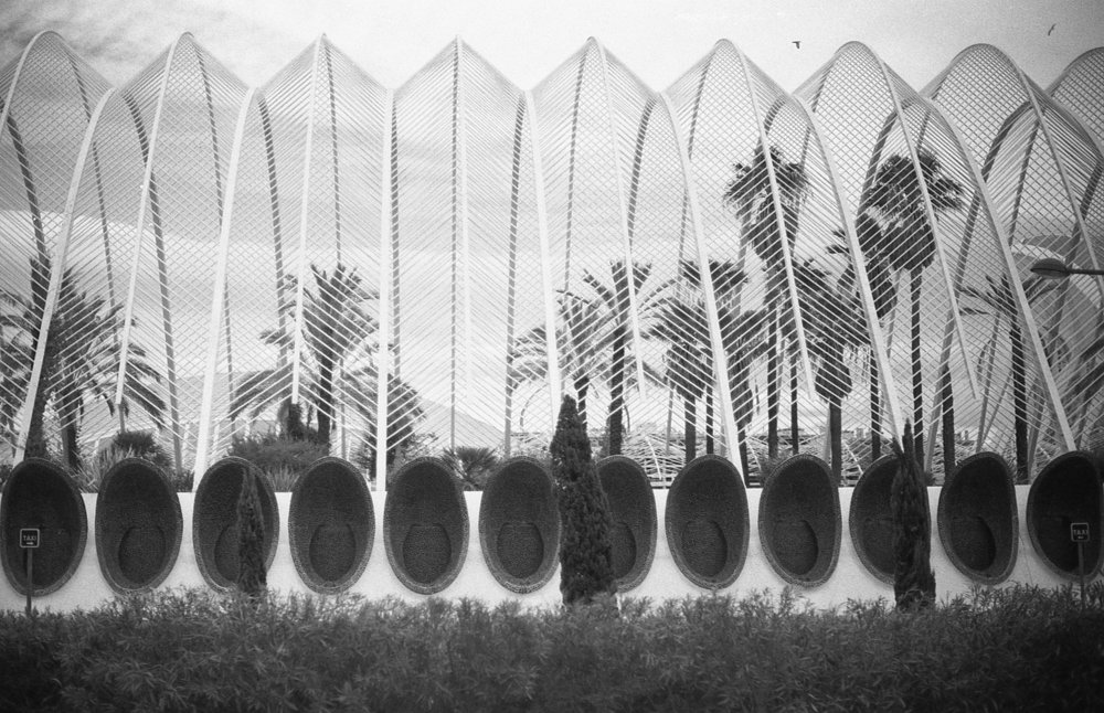 City of Arts and Sciences, L'Umbracle, Valencia, Nikon F3, Rollei Retro 400S