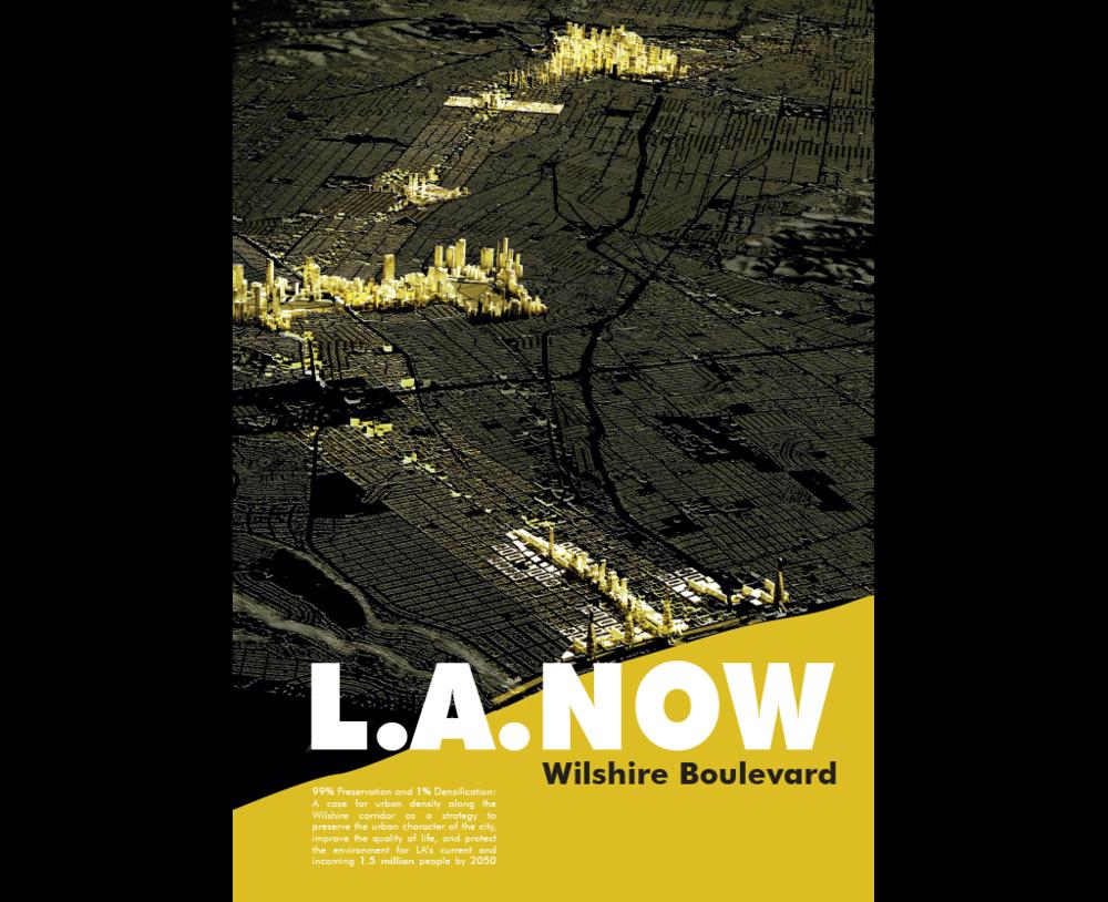 Wilshire Publicataion cover.png