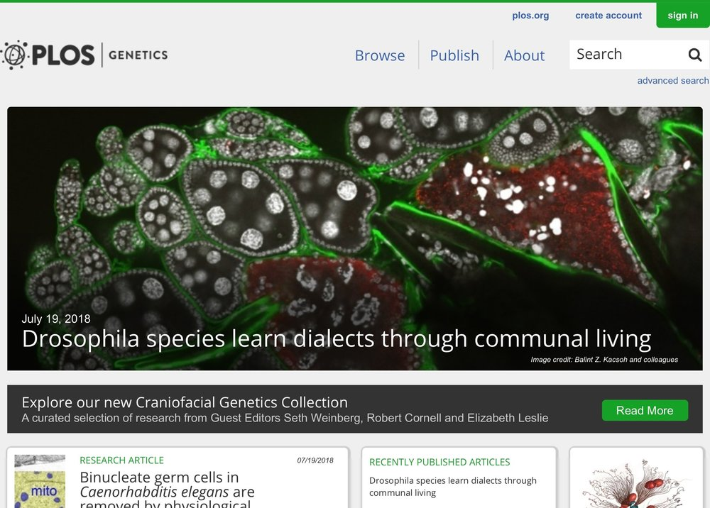 our paper featured on the PlosGenetics homepage