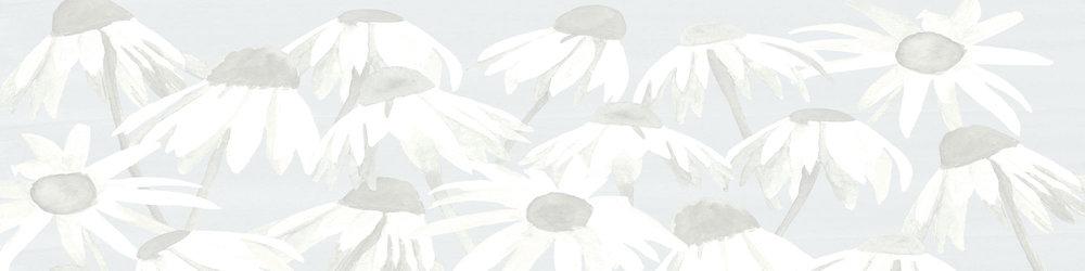 footer-background.jpg
