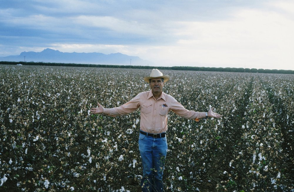 jim johnston cotton field .jpg