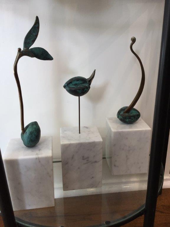 Avocado Seeds 2