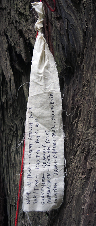 Participatory Mapping Survey  at Humboldt Redwood State Park in Northern California, 2014.