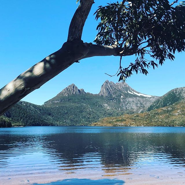 Cradle Mountain, named after Sir Walter Cradle, the first European to find this majestic spot and drive out the thriving indigenous population. #tasmania #tourismtasmania #cradlemountain #australia #history #australianhistory