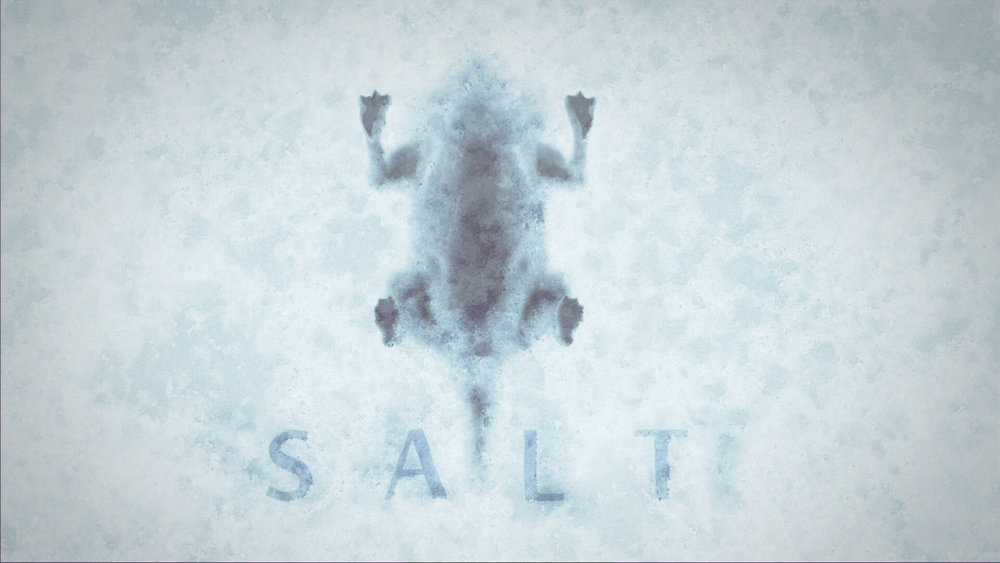 amobe_web_image__0000_CRYO_master_01_salt.jpg