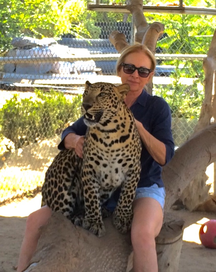leopard_5_20170922_1334384330-view=image&format=raw&type=orig&id=274.jpg