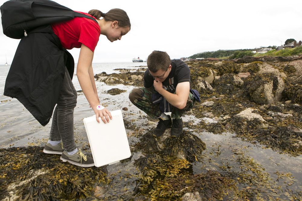 Rockpooling with the COAST experts