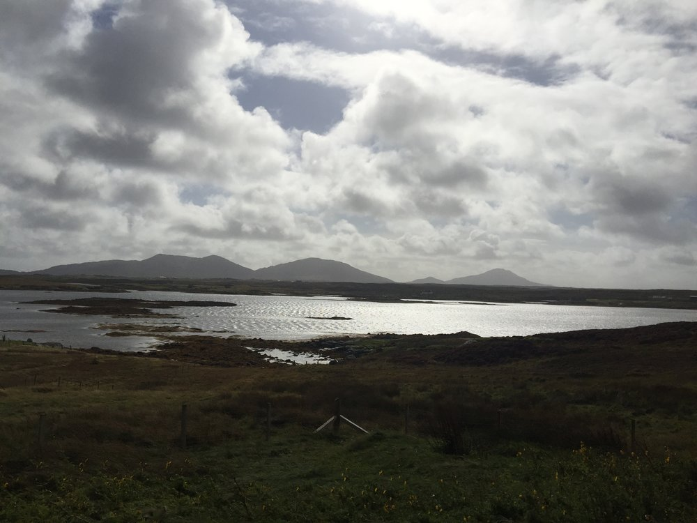 Lochmaddy, North Uist - Date: Thursday 20 September 2018Venue: Taigh Chearsabhagh Museum and Arts Centre, LochmaddyFilmmaker Ed Webb-Ingall was in conversation with Taigh Chearsabhagh's Arts Manager Andy Mackinnon and Shore tour producer Shona Thomson following a screening of the Shore films in the upstairs gallery space. We then had a beautiful moment in the cafe where Berneray-based musician Sophia Dale sang Gaelic songs about the sea. Images: Olivia Gray
