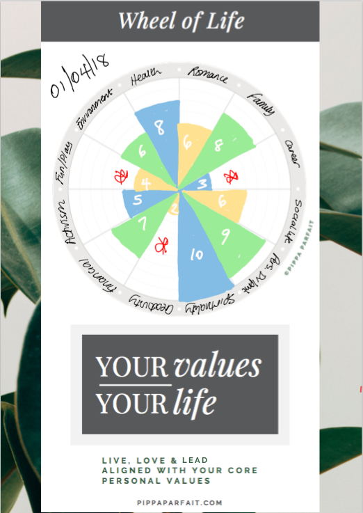 Example of Completed Wheel of Life
