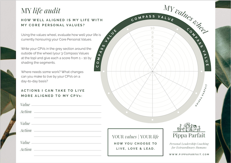 Values Wheel - My Life Audit - CLICK TO DOWNLOAD