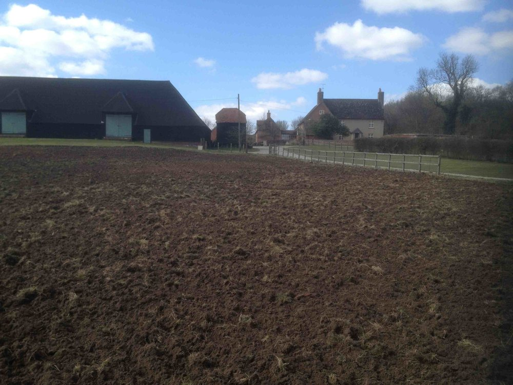 3. all ploughed and ready.jpg