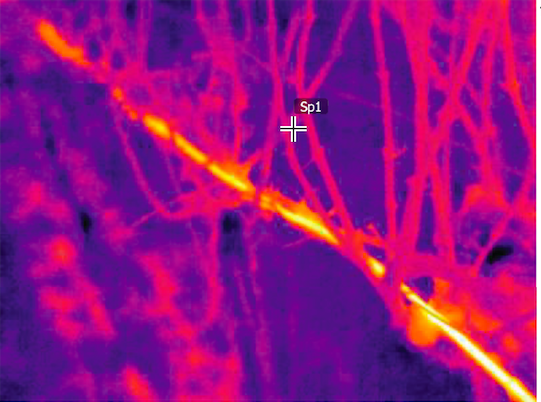 Infrared view of our wires