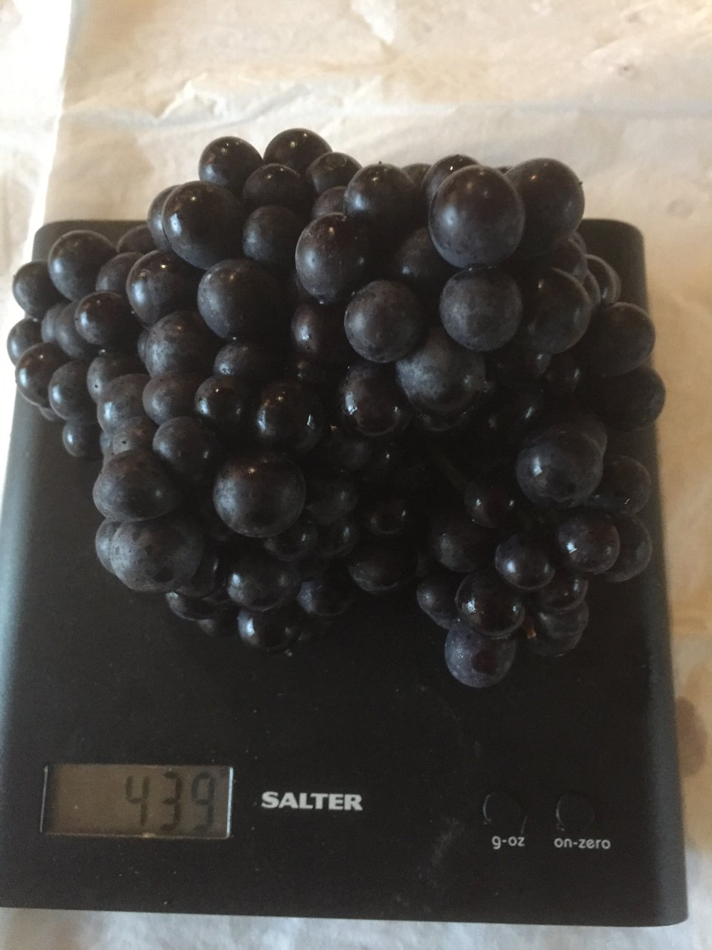 A monster bunch on the scales