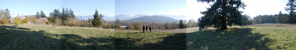 Fraser Valley Site Panorama