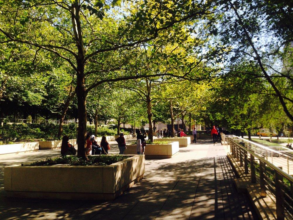 Millennium Park, truly a wonderful garden space