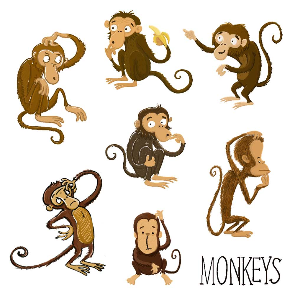 Ideas for Monkey characters
