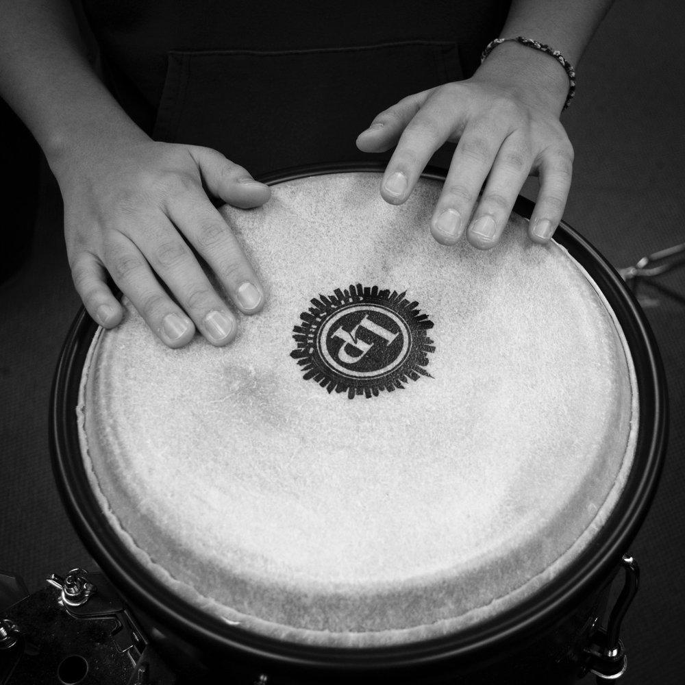 bongo hands.jpg