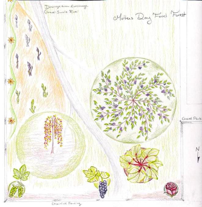 Food_Forest_Spin_Farm.jpg