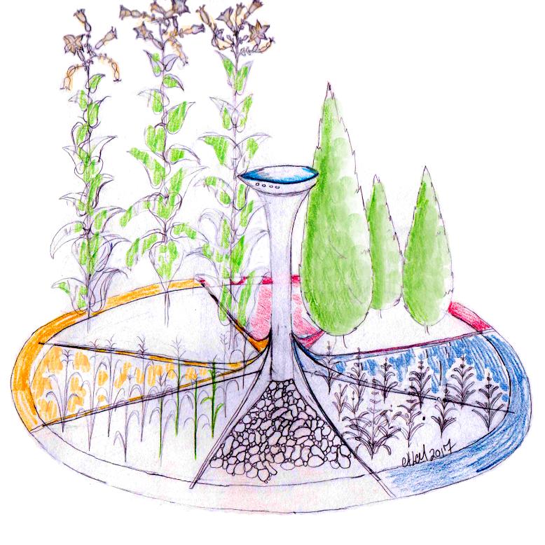 Sacred Medicine Garden - Concept Sketch