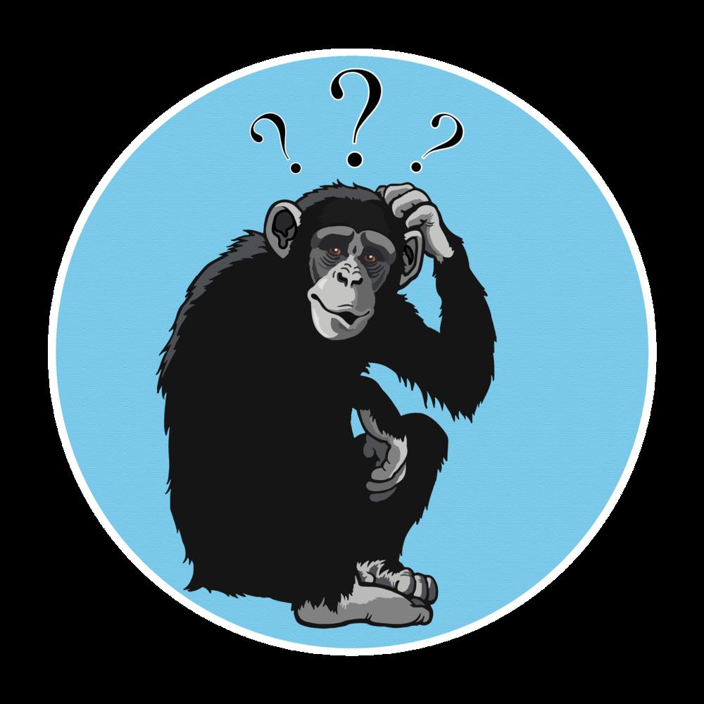 Confused Bonobo_Hannah Newey.png
