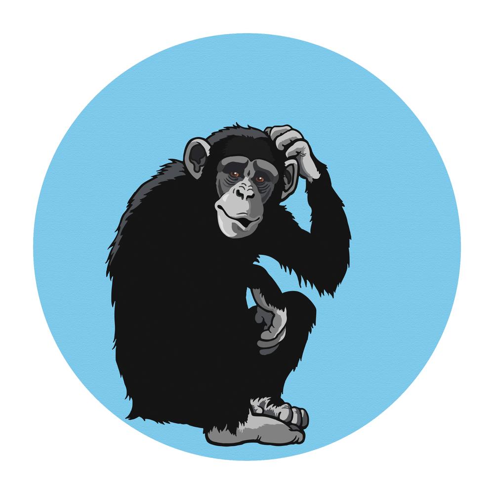 confused bonobo vector blank.png