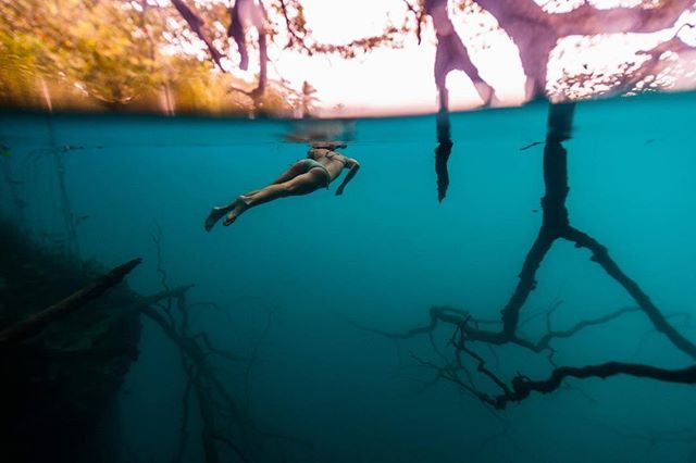 @natalie_jane1125 exploring the underwater forest on the edge of Cenote Negro // photo @benhortonphoto #tulum #bacalar #quintanaroo @eaglecreek