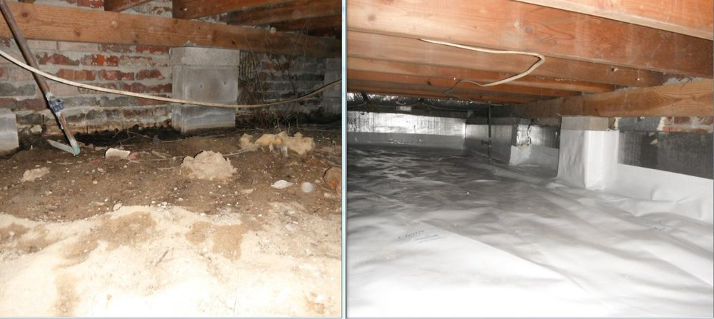 Crawl space Before and after #3.JPG