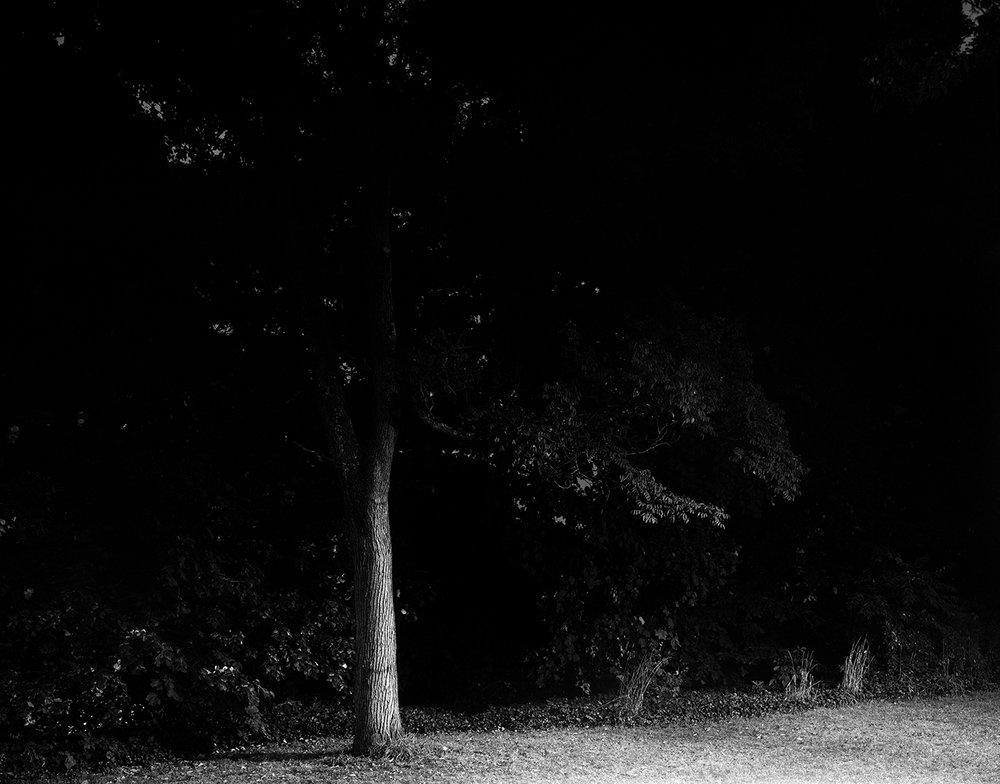 Night36 001.jpg